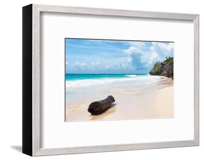 ?Viva Mexico! Collection - Tree Trunk on a Caribbean Beach-Philippe Hugonnard-Framed Photographic Print