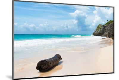 ?Viva Mexico! Collection - Tree Trunk on a Caribbean Beach-Philippe Hugonnard-Mounted Photographic Print