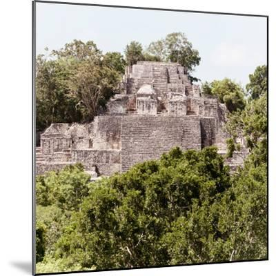¡Viva Mexico! Square Collection - Mayan Pyramid of Calakmul III-Philippe Hugonnard-Mounted Photographic Print