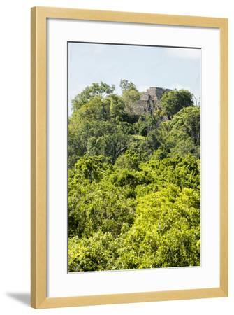 ?Viva Mexico! Collection - Ancient Maya City within the jungle III - Calakmul-Philippe Hugonnard-Framed Photographic Print
