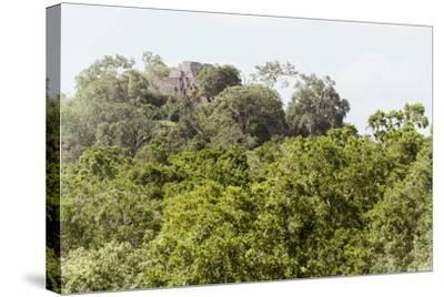 ?Viva Mexico! Collection - Ancient Maya City within the jungle II - Calakmul-Philippe Hugonnard-Stretched Canvas Print