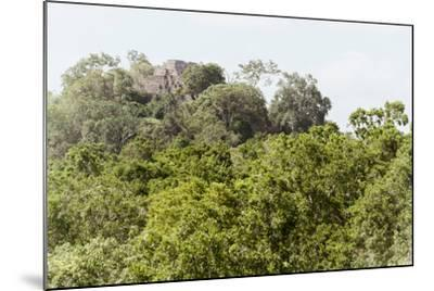 ?Viva Mexico! Collection - Ancient Maya City within the jungle II - Calakmul-Philippe Hugonnard-Mounted Photographic Print