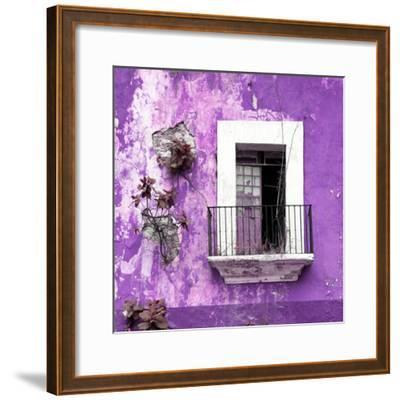 ¡Viva Mexico! Square Collection - Old Purple Facade-Philippe Hugonnard-Framed Photographic Print
