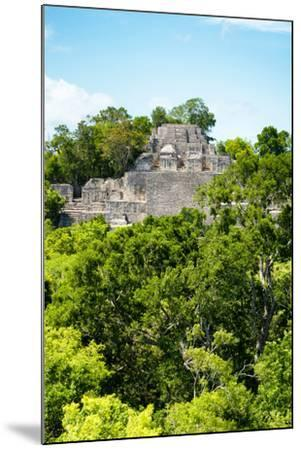 ?Viva Mexico! Collection - Ancient Maya City within the jungle of Calakmul VI-Philippe Hugonnard-Mounted Photographic Print