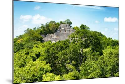 ?Viva Mexico! Collection - Ancient Maya City within the jungle of Calakmul V-Philippe Hugonnard-Mounted Photographic Print