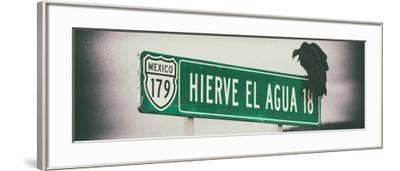 ¡Viva Mexico! Panoramic Collection - Vulture III-Philippe Hugonnard-Framed Photographic Print