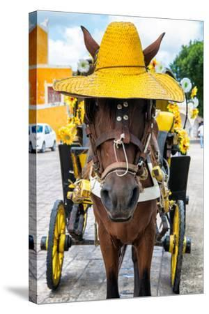 ?Viva Mexico! Collection - Horse with a straw Hat - Izamal Yellow City-Philippe Hugonnard-Stretched Canvas Print