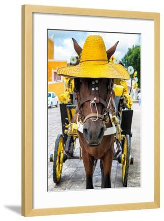 ?Viva Mexico! Collection - Horse with a straw Hat - Izamal Yellow City-Philippe Hugonnard-Framed Photographic Print