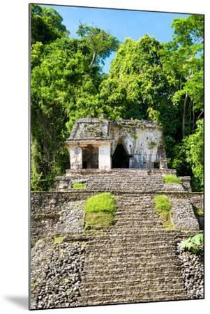 ?Viva Mexico! Collection - Mayan Ruins in the Forest-Philippe Hugonnard-Mounted Photographic Print