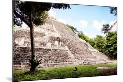 ?Viva Mexico! Collection - Mayan Pyramid II-Philippe Hugonnard-Mounted Photographic Print