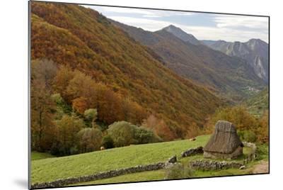 Traditional Thatched Hut, Brana De Fuexu, Valle Del Lago, Somiedo Np. Asturias, Spain-Juan Manuel Borrero-Mounted Photographic Print