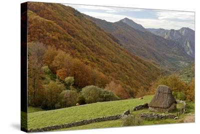 Traditional Thatched Hut, Brana De Fuexu, Valle Del Lago, Somiedo Np. Asturias, Spain-Juan Manuel Borrero-Stretched Canvas Print