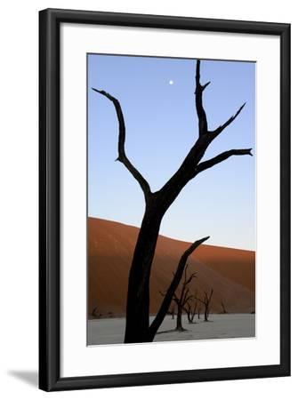 Dead Trees In Deadvlei Clay Pan, Sossusvlei. Namib-Naukluft National Park, Namibia, September 2013-Enrique Lopez-Tapia-Framed Photographic Print