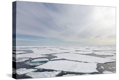 Norway, Svalbard, Pack Ice, Pack Ice-Ellen Goff-Stretched Canvas Print