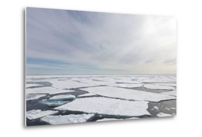 Norway, Svalbard, Pack Ice, Pack Ice-Ellen Goff-Metal Print