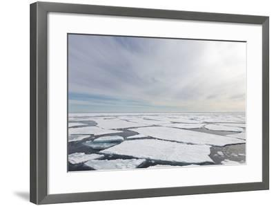 Norway, Svalbard, Pack Ice, Pack Ice-Ellen Goff-Framed Photographic Print