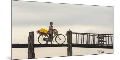 Myanmar, Mandalay. Woman Walks Her Flower-Laden Bicycle across U Bein Bridge-Brenda Tharp-Mounted Premium Photographic Print