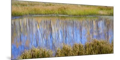 Utah, Dixie National Forest. Chriss Lake Landscape-Jaynes Gallery-Mounted Premium Photographic Print