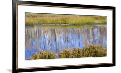 Utah, Dixie National Forest. Chriss Lake Landscape-Jaynes Gallery-Framed Premium Photographic Print