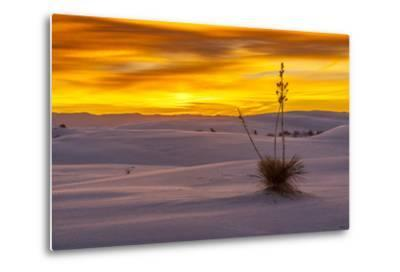 New Mexico, White Sands National Monument. Sunset on Desert and Yucca-Jaynes Gallery-Metal Print