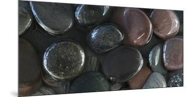 Washington State, Rocks in Water-Jaynes Gallery-Mounted Premium Photographic Print