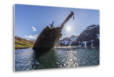 Ocean Harbor, South Georgia Island. the Shipwreck Bayard on Beach at Sunrise-Jaynes Gallery-Metal Print