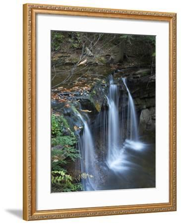 Cayuga Falls, Ricketts Glen State Park, Pennsylvania, Usa-Tim Fitzharris-Framed Photographic Print