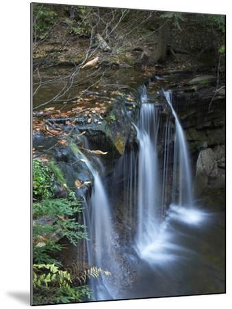 Cayuga Falls, Ricketts Glen State Park, Pennsylvania, Usa-Tim Fitzharris-Mounted Photographic Print