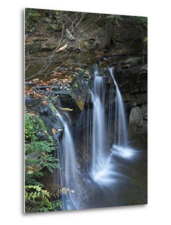 Cayuga Falls, Ricketts Glen State Park, Pennsylvania, Usa-Tim Fitzharris-Metal Print