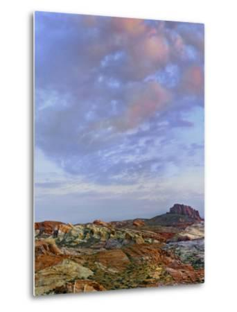 Colorful Landscape of Rainbow Vista, Valley of Fire State Park, Nevada, Usa-Tim Fitzharris-Metal Print