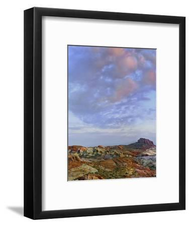 Colorful Landscape of Rainbow Vista, Valley of Fire State Park, Nevada, Usa-Tim Fitzharris-Framed Photographic Print
