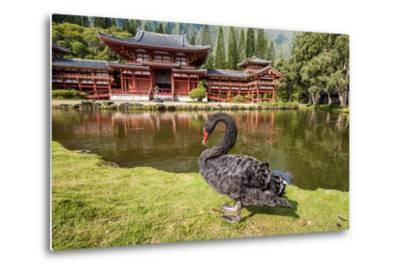 Byodo-In Temple, Valley of the Temples, Kaneohe, Oahu, Hawaii-Michael DeFreitas-Metal Print