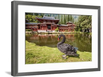 Byodo-In Temple, Valley of the Temples, Kaneohe, Oahu, Hawaii-Michael DeFreitas-Framed Photographic Print