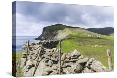 Shetland Islands, Foula, Hametown Settlement. Stone Fence around the Cliffs-Martin Zwick-Stretched Canvas Print