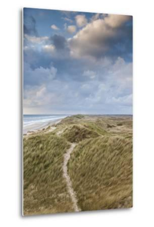 Denmark, Jutland, Danish Riviera, Hvide Sande, Coastal Dunes, Dusk-Walter Bibikow-Metal Print