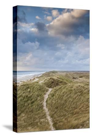 Denmark, Jutland, Danish Riviera, Hvide Sande, Coastal Dunes, Dusk-Walter Bibikow-Stretched Canvas Print