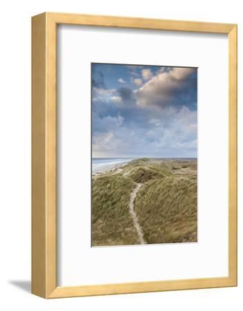 Denmark, Jutland, Danish Riviera, Hvide Sande, Coastal Dunes, Dusk-Walter Bibikow-Framed Photographic Print