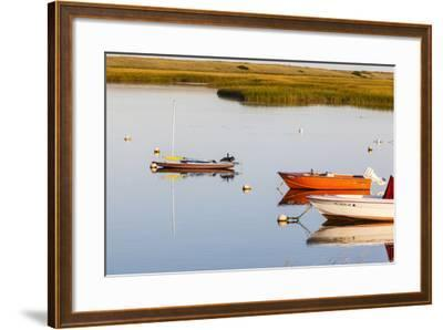 A Cormorant Opens its Wings on a Skiff in Pamet Harbor in Truro, Massachusetts-Jerry and Marcy Monkman-Framed Photographic Print
