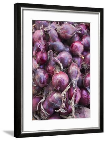 Denmark, Zealand, Copenhagen, Torvehallerne Kph, Onions-Walter Bibikow-Framed Photographic Print