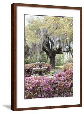 South Carolina, Frampton Plantation, Patio and Garden-Lisa S^ Engelbrecht-Framed Photographic Print