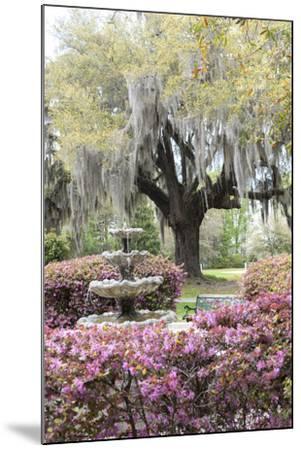 South Carolina, Frampton Plantation, Patio and Garden-Lisa S^ Engelbrecht-Mounted Photographic Print
