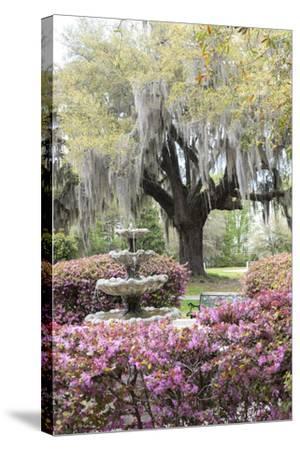 South Carolina, Frampton Plantation, Patio and Garden-Lisa S^ Engelbrecht-Stretched Canvas Print