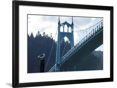 Oregon, Portland, Cathedral Park, Western Gull in Front of St. John's Bridge-Rick A^ Brown-Framed Photographic Print