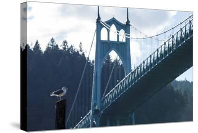 Oregon, Portland, Cathedral Park, Western Gull in Front of St. John's Bridge-Rick A^ Brown-Stretched Canvas Print