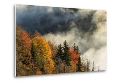 Autumn Colors and Mist at Sunrise, North Carolina-Adam Jones-Metal Print