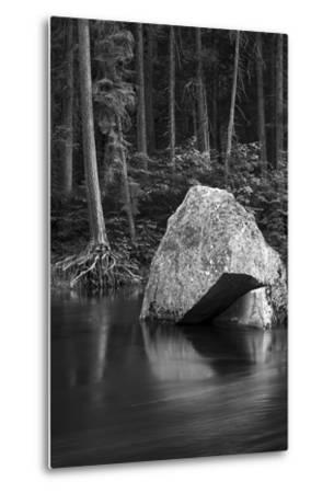California. Yosemite National Park-Judith Zimmerman-Metal Print