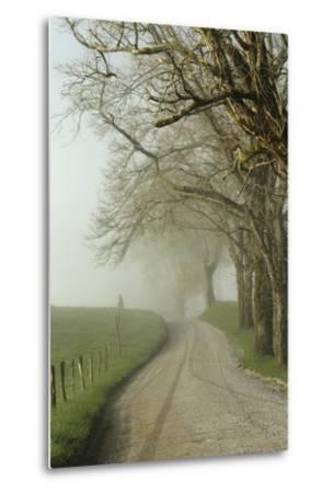 Early Morning View of Sparks Lane, Cades Cove, Great Smoky Mountains National Park, Tennessee-Adam Jones-Metal Print