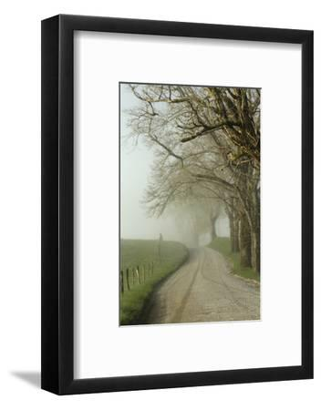 Early Morning View of Sparks Lane, Cades Cove, Great Smoky Mountains National Park, Tennessee-Adam Jones-Framed Photographic Print