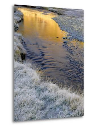 California, Inyo National Forest-John Barger-Metal Print
