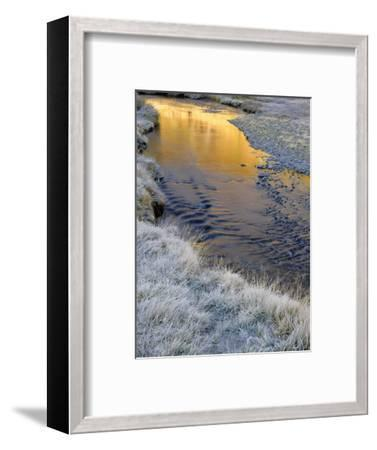 California, Inyo National Forest-John Barger-Framed Photographic Print
